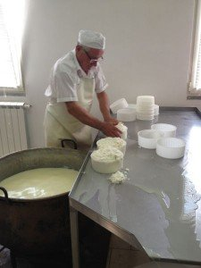 Pressing curds in their baskets
