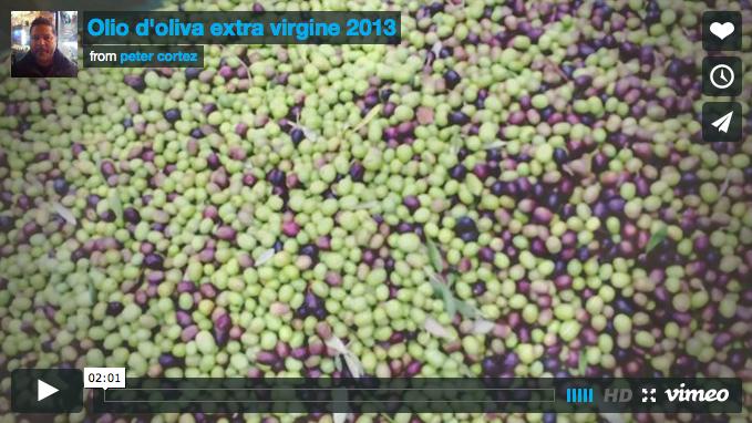 Harvest Olive Oil Video