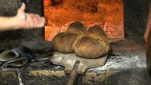 bread4 - Altamura
