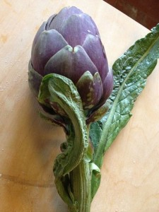 one perfect artichoke