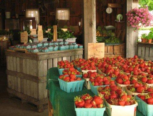 Maine, food, strawberries, Beth's